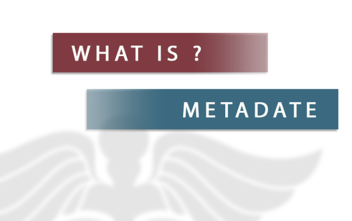 what is metadate